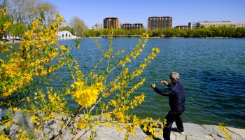 People's Daily Life Gradually Recovers In Beijing