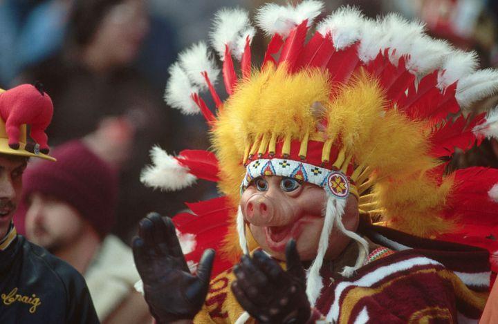 Washington Redskins Fan